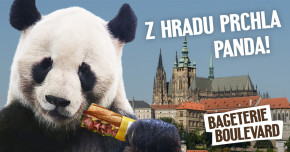 Z Hradu prchla panda!